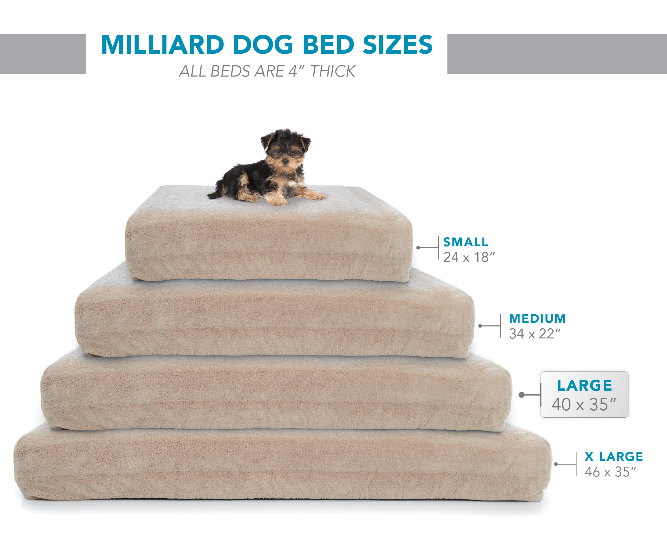 bed large animal dogs free pet planet dog memory today for overstock shipping beds lounger foam supplies product