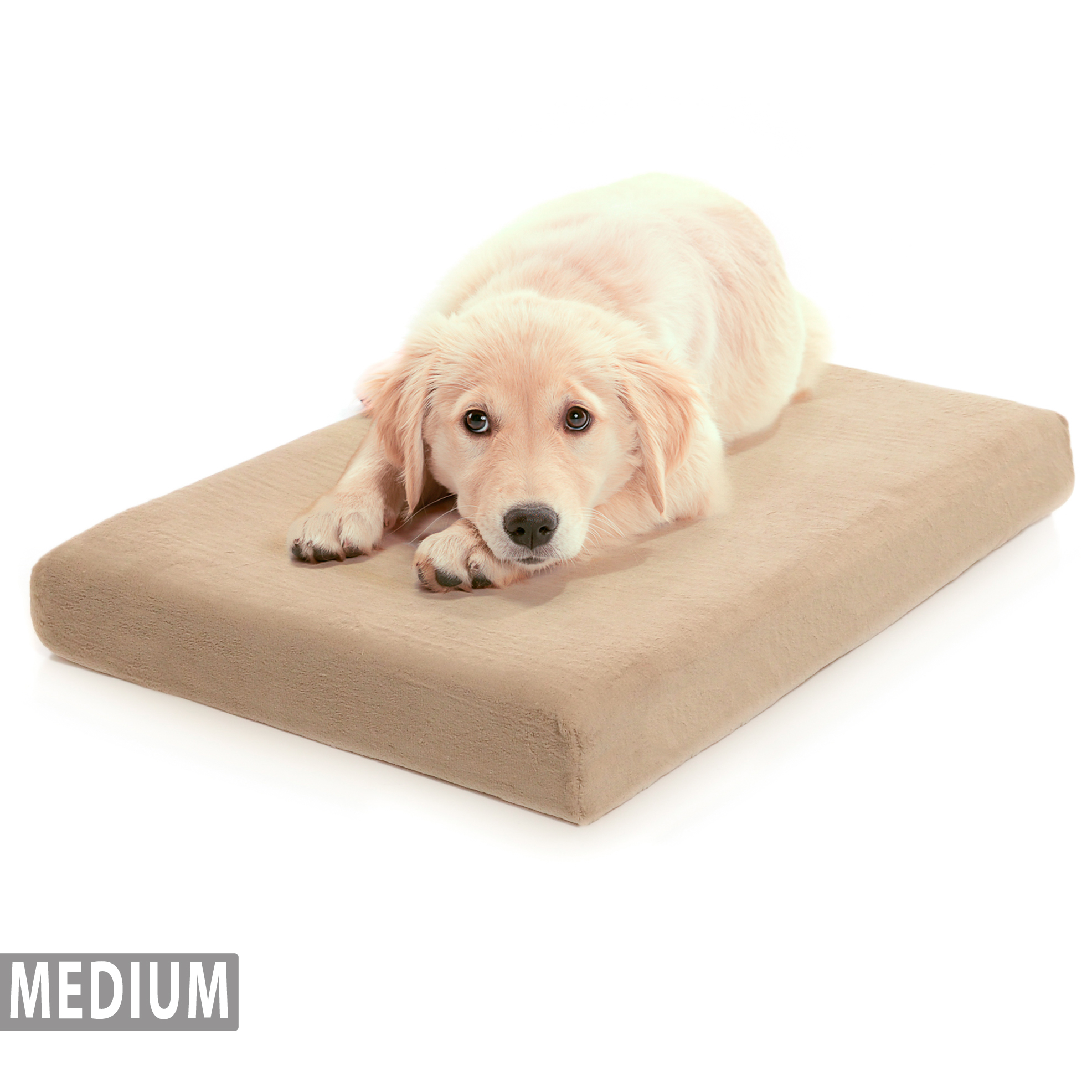 dog bed best care orthopedic heated dogs top beds reviews with
